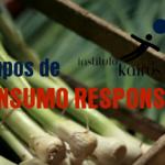 Consumo Responsável – Instituto Kairós